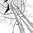 Three Birds by Aleksandra Kabakova