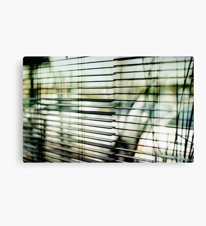 striped world no less beautiful Canvas Print