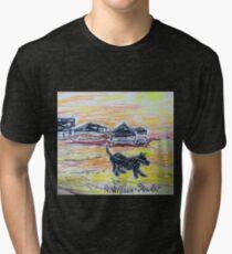 Beach Dog Tri-blend T-Shirt