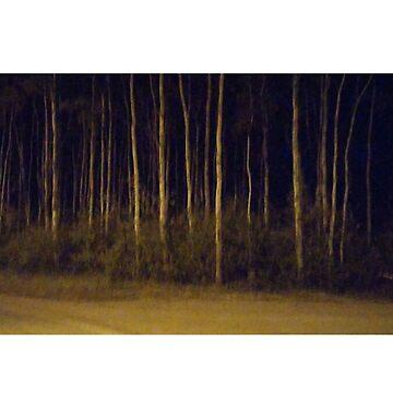 trees by tiffanyo