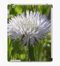 Young Star Thistle - Best Viewed Larger iPad Case/Skin