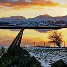 Llyn (Lake)Trawsfynydd, North Wales,  by AnnDixon