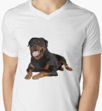 Rottweiler Portrait Men's V-Neck T-Shirt