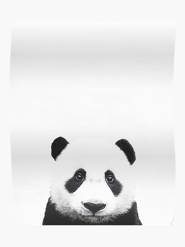Baby Panda, Kinderzimmer, Tier, Kinderzimmer, Moderne Kunst, Wanddekoration  | Poster
