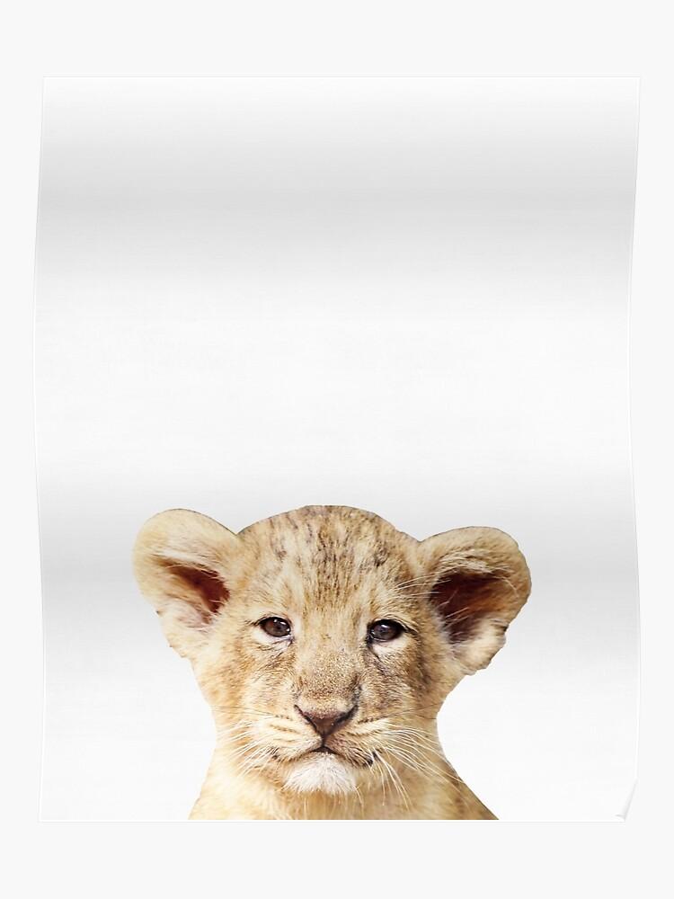 Baby Lion, Kinderzimmer, Tier, Kinderzimmer, moderne Kunst, Wanddekoration  | Poster