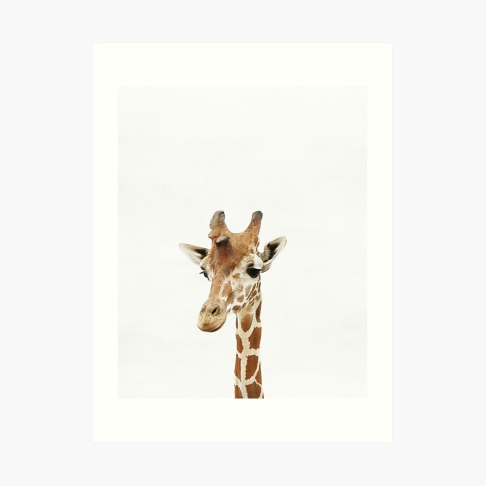 Baby Giraffe, Nursery, Animal, Kids room, Modern art, Wall decor Art Print