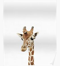 Baby Giraffe, Kinderzimmer, Tier, Kinderzimmer, moderne Kunst, Wanddekoration Poster