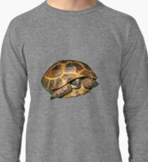 Greek Tortoises in Shell Lightweight Sweatshirt