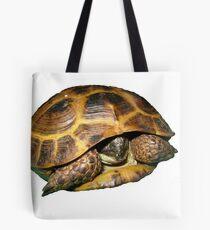 Greek Tortoises in Shell Tote Bag