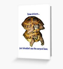 Tortoises - Some people shouldn't use the car pool lane Greeting Card
