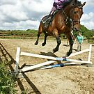 How to ride a horse: Get on it, and off you go! by Remo Kurka