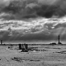 Dungeness Through a Prime Lens 06 by Andy Coleman