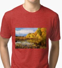 Autumn nature Tri-blend T-Shirt