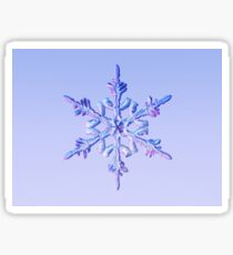 Snowflake-1 Sticker