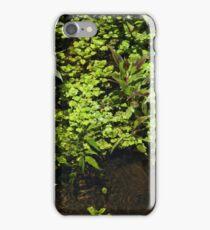 Aquatic Plants in a Stream iPhone Case/Skin