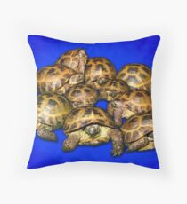 Greek Tortoise Group - Dark Blue Throw Pillow