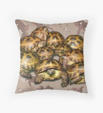 Greek Tortoise Group - Desert Camo Background Throw Pillow