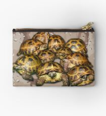 Greek Tortoise Group - Desert Camo Background Studio Pouch