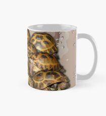 Greek Tortoise Group - Desert Camo Background Mug