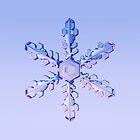 Snowflake-2 by Ray Cassel