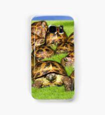 Greek Tortoise Group on Grass Background Samsung Galaxy Case/Skin