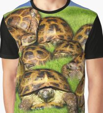 Greek Tortoise Group on Grass Background Graphic T-Shirt