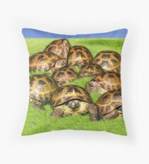 Greek Tortoise Group on Grass Background Throw Pillow