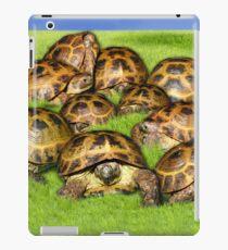 Greek Tortoise Group on Grass Background iPad Case/Skin