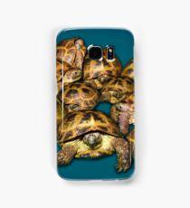 Greek Tortoise Group on Gray-Blue Background Samsung Galaxy Case/Skin