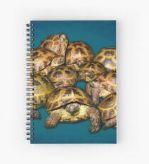 Greek Tortoise Group on Gray-Blue Background Spiral Notebook