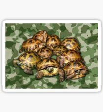 Greek Tortoise Group on Green Camo Sticker