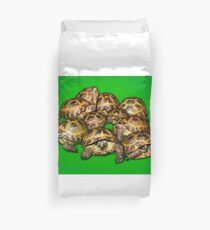 Greek Tortoise Group on Bright Green Background Duvet Cover