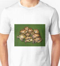 Greek Tortoise Group on Darn Green Background T-Shirt