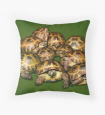 Greek Tortoise Group on Darn Green Background Throw Pillow