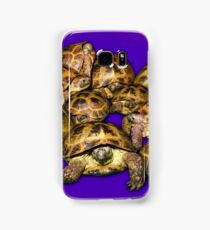 Greek Tortoise Group on Purple Background Samsung Galaxy Case/Skin