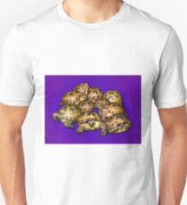 Greek Tortoise Group on Purple Background T-Shirt