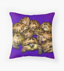 Greek Tortoise Group on Purple Background Throw Pillow