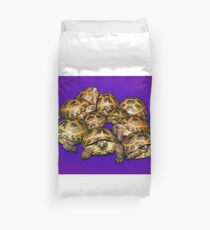 Greek Tortoise Group on Purple Background Duvet Cover
