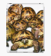 Greek Tortoise Group iPad Case/Skin