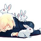 Rabbits by starfleetrambo
