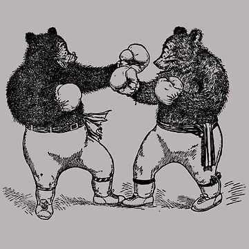 Boxing Bears by KathrynMSantos