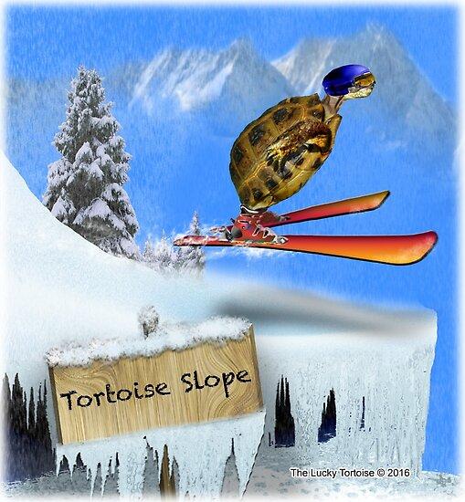 Skiing Tortoise Slope by LuckyTortoise