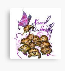 Tortoise Butterflies - Social Butterfly Canvas Print