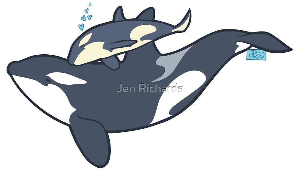Orca mother and calf by Jen Richards