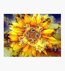 Flowering Sun.  Photographic Print