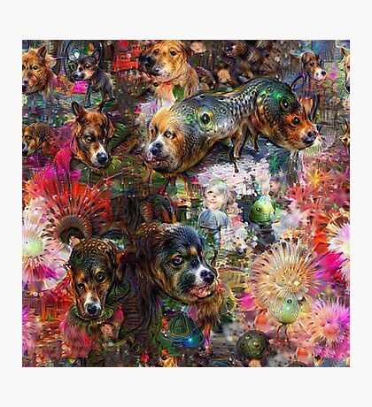 Dogs & Dreams Photographic Print