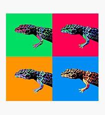 Warhol Gecko Photographic Print