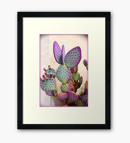 Purple Cactus Framed Print