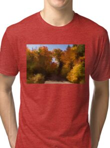 Sunny, Warm and Colorful - Autumn Impressions Tri-blend T-Shirt