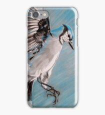 """Blue Jay"" iPhone Case/Skin"